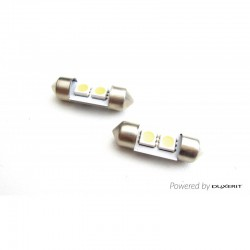 C3W 31MM - AMPOULES LED...